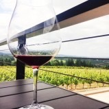 Take a trip to the Ponzi Vineyard in Sherwood
