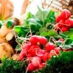 Kenton Farmers Market 1